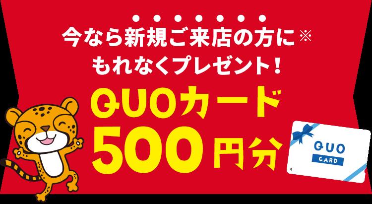 今なら新規ご来店の方にもれなくQUOカード500円分プレゼント!